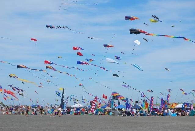 image-result-for-kite-flying-festival-gujrat-1