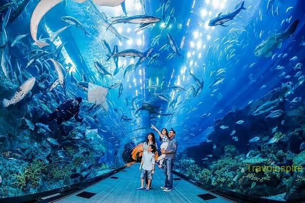 Dubai-Aquarium-05.jpg