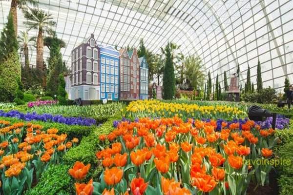 Gardens-By-The-Bay-15.jpg