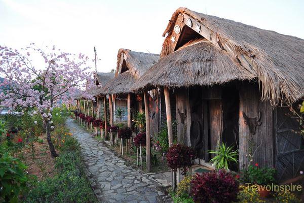 Nagaland-01.jpg